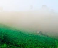 在薄雾的村庄在小山 库存照片