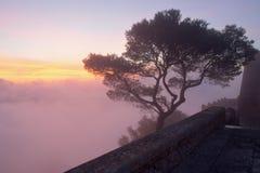 在薄雾的树在与修道院墙壁的日出在前景和美丽的色的多云天空,sant萨尔瓦多,费拉尼奇,马略卡 库存图片