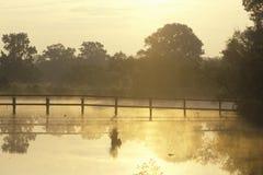 在薄雾的走的桥梁,路易斯安那 免版税库存照片