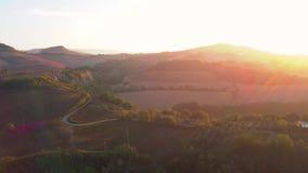 在薄雾福雷斯特日落五颜六色的秋天树金黄小时日落的史诗空中飞行上色史诗荣耀启发 影视素材