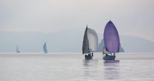 在薄雾, Porquerolles,法国的帆船 库存照片