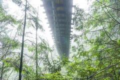 在薄雾-温哥华-加拿大- 2017年4月12日的Capilano吊桥 免版税库存照片