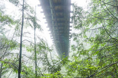 在薄雾-温哥华-加拿大- 2017年4月12日的Capilano吊桥 免版税库存图片