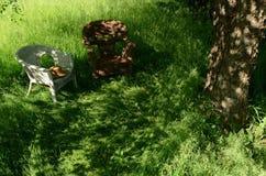 在藤椅的帽子起斑纹了太阳treet树干 免版税库存照片