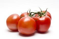 在藤的红色蕃茄 免版税库存图片