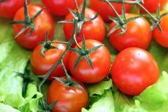 在藤的蕃茄与水下落 免版税库存图片