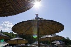 在藤茎的阳伞海滩 免版税库存照片