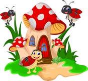 在蘑菇的动画片瓢虫 库存照片