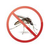 在蚊子的停车牌 皇族释放例证