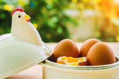 在蛋杯的鸡蛋早餐 免版税图库摄影