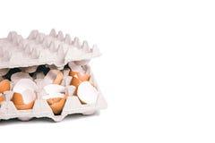 在蛋盒的蛋壳 免版税库存照片