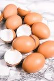在蛋盒的蛋壳 库存图片