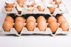 在蛋盒的蛋壳 免版税图库摄影