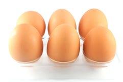 在蛋盒的鸡蛋 免版税库存图片