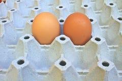 在蛋盘子的鸡蛋 免版税库存图片