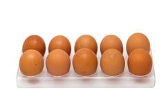 在蛋盘子的10个鸡鸡蛋 免版税库存图片