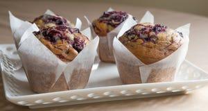 在蛋糕板材的三个蓝莓松饼 库存照片