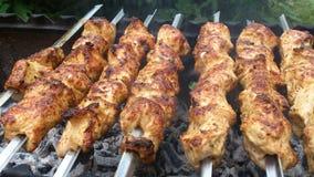 在蛋黄酱的土耳其kebab 库存图片