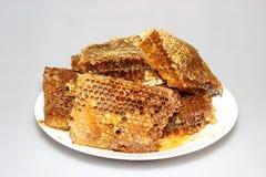 在蜂窝的蜂蜜在板材 免版税库存图片
