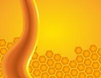 在蜂窝的蜂蜜水滴 免版税库存图片
