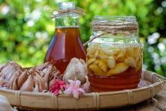 在蜂蜂蜜,补救护肤的大蒜 免版税库存照片