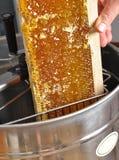 在蜂蜜提取器的开盖的蜂窝 库存照片