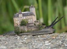 在蜗牛的老城堡 免版税库存图片