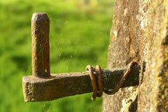 在蜘蛛网盖的老门铰链 免版税库存照片