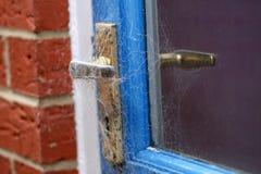 在蜘蛛网盖的门把手 免版税库存图片