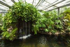 在蝴蝶房子的瀑布 Mainau海岛 德国 库存照片