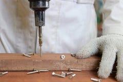 在螺丝的选择聚焦有电工具的与木匠的手一起使用白色制服的在木车间 库存照片