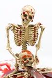 在血液的静物画骨骼与在白色背景的刀子 库存图片
