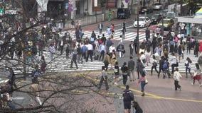 在行人交叉路涩谷东京人群的看法  E 股票录像