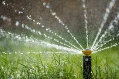 在行动浇灌的草的喷水隆头 免版税库存照片
