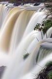 在行动的伊瓜苏瀑布 库存照片