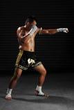 在行动的泰拳男性战斗机 免版税库存图片
