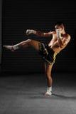 在行动的泰拳男性战斗机 图库摄影