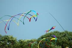 在行动的风筝对鳕鱼角马萨诸塞 图库摄影