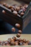 在行动翻筋斗的榛子到竹碗里 免版税库存图片