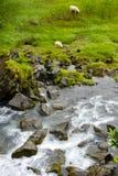 在行动迷离的Thorsteinslundur瀑布在阴暗天 库存照片