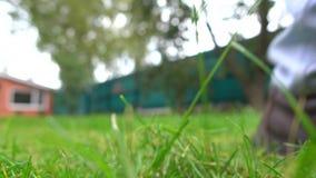 在行动,关闭的黄色割草机 4K低角度4K射击 影视素材