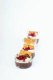 在行的四块玻璃用巧克力和香草布丁,曲奇饼,石榴种子 库存照片