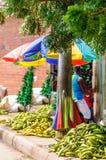 在街市上的香蕉在卡塔赫钠-哥伦比亚 免版税库存图片