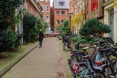 在街市市停放的自行车阿姆斯特丹在秋天期间 库存图片