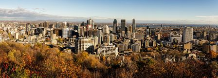 在街市的多伦多的全景 免版税库存图片