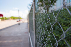 在街市芝加哥的街道上的篱芭  免版税库存图片