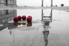 在街道上的五红色篮球有反射的 免版税库存图片