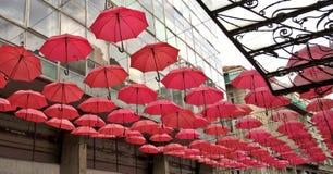 在街道上的伞 免版税图库摄影