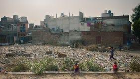 在街道上的垃圾 在残骸中的生活总是不是憎恶 习性和免疫 免版税库存照片