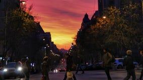 在街道上的夜 免版税库存照片